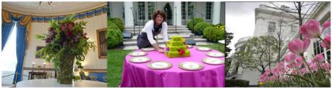 white house header pic