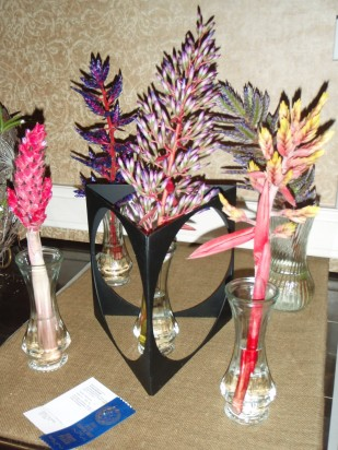 2014 FFGC State Flower Show